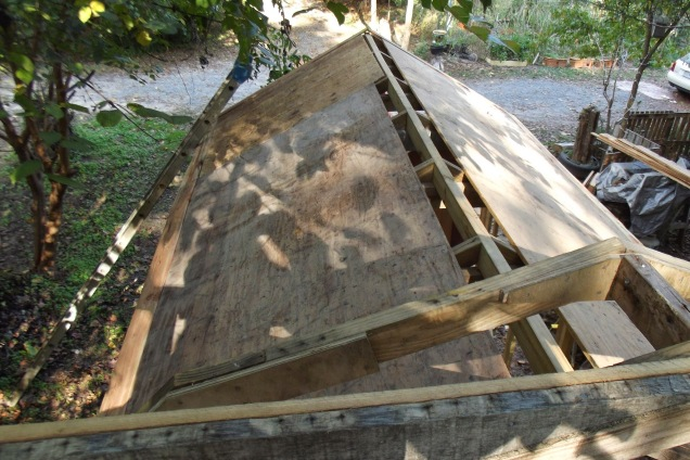 plywood roof5